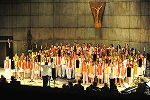 Concert Pic'Pulse de mai 2013 au profit du Centre Damien